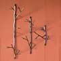 Ancient Graffiti Twigs Wall Hanger Package, Set of 3