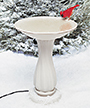 Allied Precision Heated Bird Bath with Plastic Pedestal