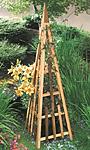 """Arboria Pyramid Cedar Trellis, Natural, 81"""""""