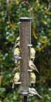 Aspects Thistle Tube Wild Bird Feeder, Large, Nickel