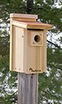 Audubon Coppertop Bluebird House