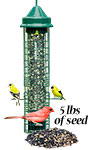 Squirrel Buster Classic Bird Feeder with Divine Blend Seed