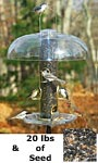 Aspects Big Tube Wild Bird Feeder w/ Seed, Dome, and Tray