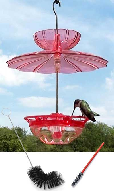 by hummingbird best feeder care wildbird feeders hanging metal