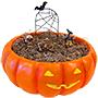 BestNest Spooky Halloween Fairy Garden Package
