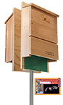 BestNest Double Triple-Celled Bat House Package, 600 Bats