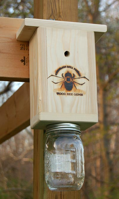 Chrisman Mill Farms Carpenter Bee Trap Hole Plugs At BestNest