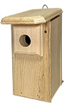 Coveside Eastern Bluebird House