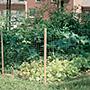 Gardeneer Plastic Fencing, 3' x 50'