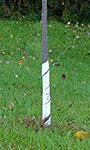 """Gardman Spiral Tree Wraps, White, 17"""", Pack of 250"""