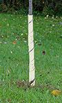 "Gardman Spiral Tree Wraps, Beige, 28"", Pack of 250"