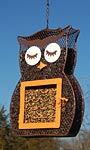 Heath Owl Seed and Suet Bird Feeder