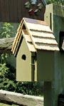 Heartwood Bluebird Manor, Pinion Green