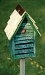 Heartwood Lady Bug House w/ Mounting Pole, Green