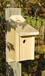 Heartwood Joy Box Wren, Titmouse, & Nuthatch House