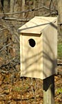 Heartwood Joy Box Screech Owl & Kestrel House