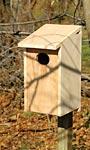Heartwood Joy Box Wood Duck House