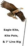 Jackite Bald Eagle Kite & Fiberglass Telescoping Pole