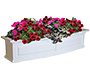 "Mayne Nantucket Window Box, White, 48""L"
