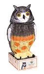 "Master Gardner Wobble Head Scarecrow Owl, 15.75"""