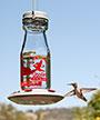 More Birds Jersey Hummingbird Feeder, 20 oz.