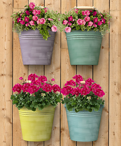 Panacea Half Round Bucket Wall Planters Asst Colors 4 Pk At