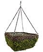 """Panacea Wicker & Moss Square Hanging Basket, Grn/Brn, 14""""L"""