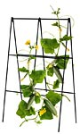 Panacea A-Frame Cucumber Folding Trellises, Black, Pack of 6