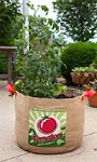 "Panacea Tomatoes Grow Bags, 19"" dia., Pack of 4"
