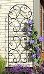"Panacea Scroll Trellis, Black, 72""H"