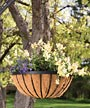 "Panacea Cotswold Series Hanging Basket, Black, 17.75"" dia."