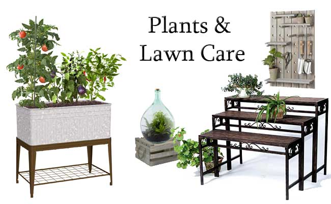 Plants & Lawn Care
