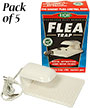 SpringStar Flea Traps, Pack of 5