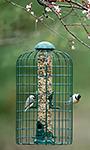 Stokes Squirrel Resistant Caged Bird Feeder