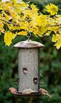 Stokes Giant Mesh Combo Bird Feeder, Copper Colored