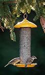 Stokes Finch Screen Mesh Bird Feeder, Yellow