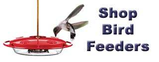 Shop Bird Feeders