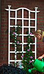 "New England London Trellis, White, 79.25""H"