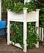 New England Urbanscape Raised Planter Box, 2'L x 3'W