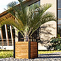 "Vita Gardens Mezza Cedar Cube Planter, Brown, 22""L x 22""W"