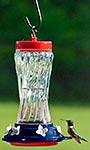 Woodlink Patriotic Swirl Glass Hummingbird Feeder, 16 oz.