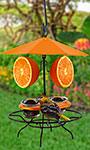 Woodlink Patio Table with Umbrella Oriole Feeder